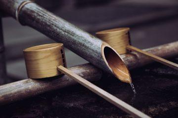禅という言葉には、仏教用語だけで禅定、禅宗、座禅の三つの意味があります。