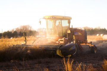 人体への影響よりも生産性重視なアメリカの農業