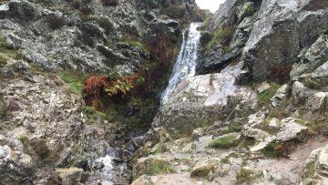 滝までは比較的平らなので、歩く自信がない人は滝だけ見にいくのもおすすめ。