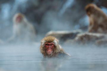 温泉で 休日が充実